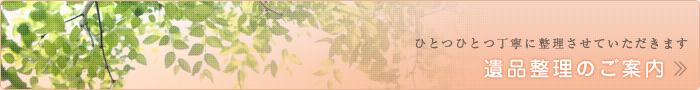 pigeonhole_banner